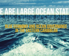 """We Are Large Ocean States"", chronicles the OECS journey in marine resource management reform"